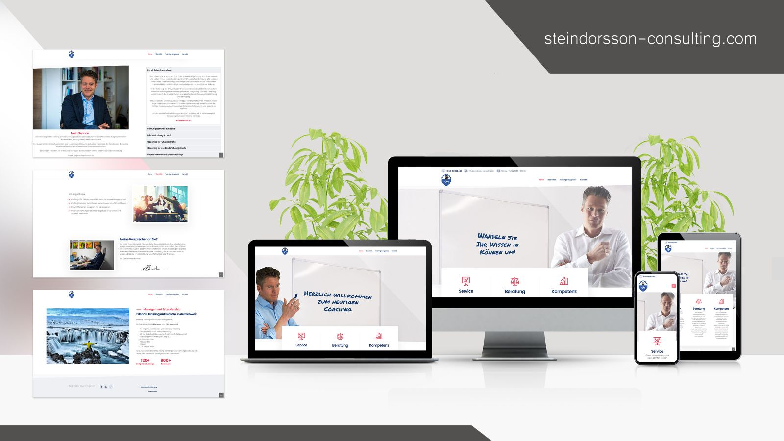 Steindorsson Consulting Webseite